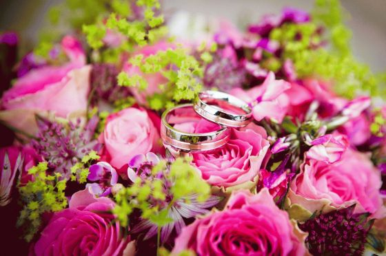 Silver Wedding Rings and Rose Flowers
