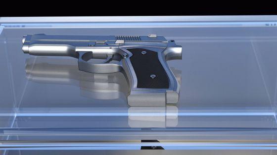 Handgun or Pistol