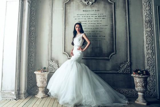 Bridal Gown or Wedding Dress