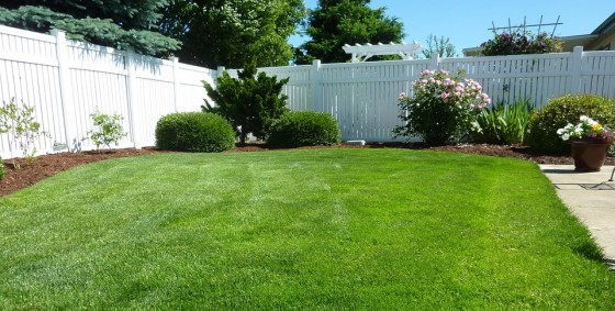Vinyl Backyard Fencing