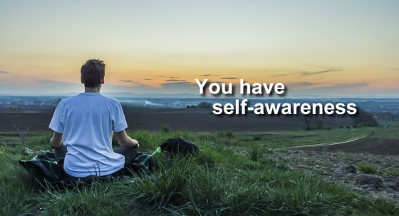 Introvert: You have self-awareness