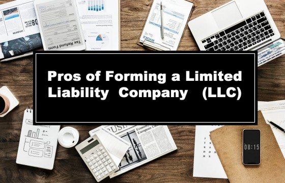 Pros and Cons to Consider When You Form a Limited Liability Company