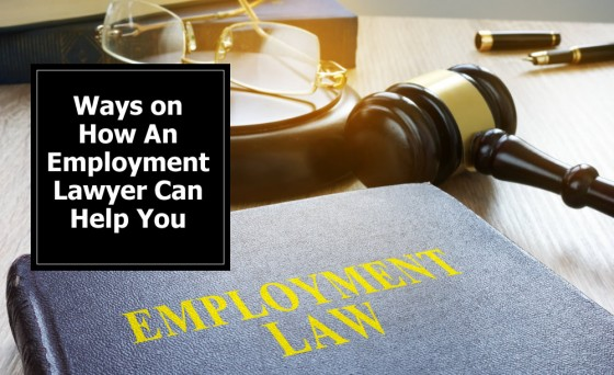 Ways on How An Employment Lawyer Can Help You