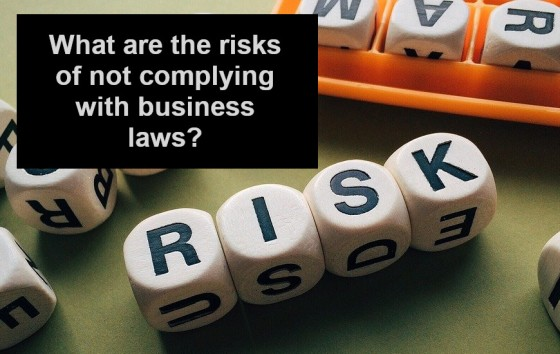 What are the risks of not complying with business laws