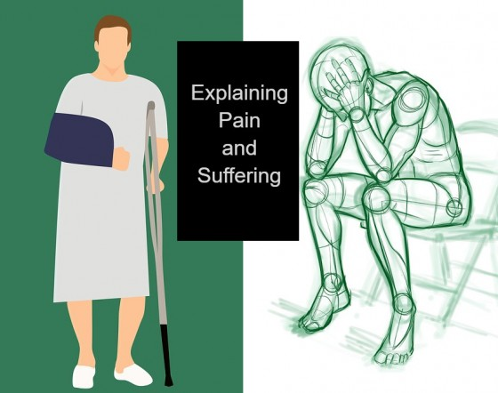 Explaining Pain and Suffering
