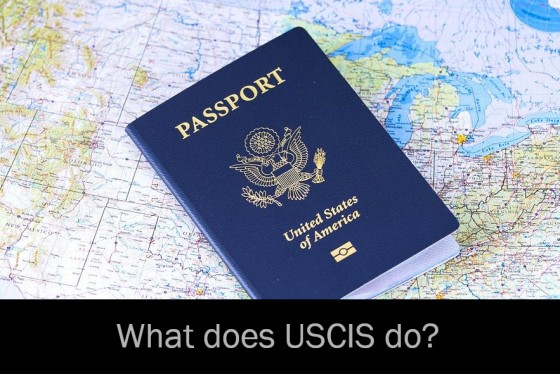 What does USCIS do