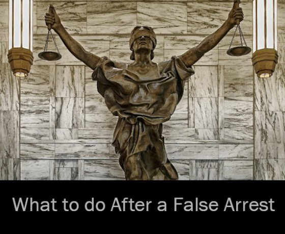 What to do After a False Arrest