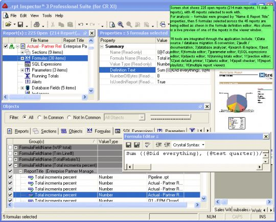 .rpt Inspector Professional Suite (for CR 10) Screenshot