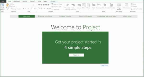 Microsoft Project Standard Screenshot
