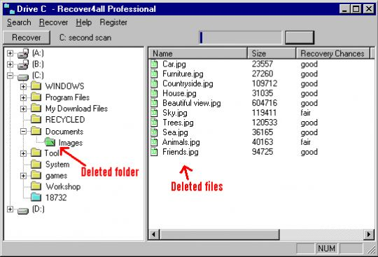 Recover4all Professional Screenshot