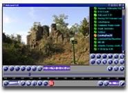 VidLizard Screenshot