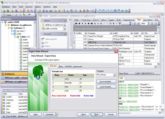 EMS PostgreSQL Manager Professional Screenshot