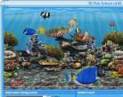 3D Fish School Screensaver Screenshot